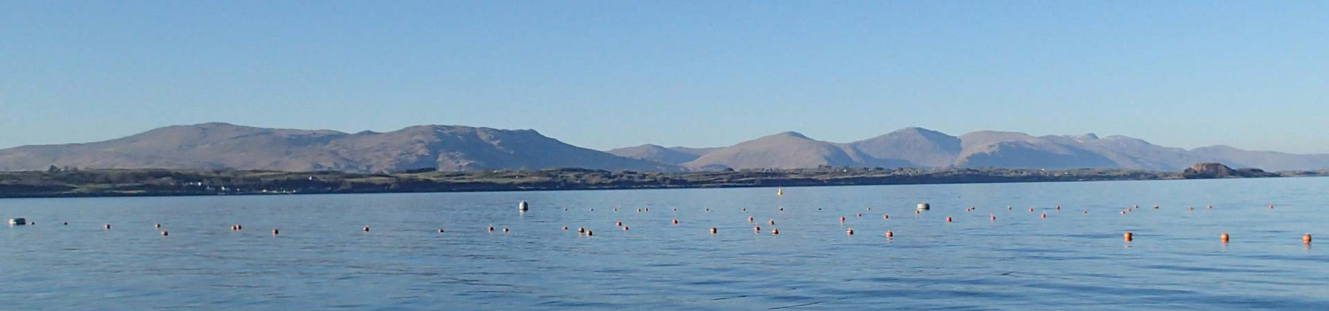 Picture of our seaweed farm - only a few buoys visible from the surface