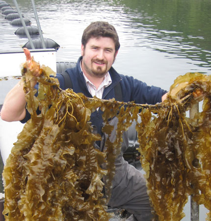 Lars Brunner, on our seaweed farm, holding a line of his sugar kelp crop