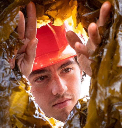 Callum OConnel with red hard hat working aboard a vessel harvesting seaweed