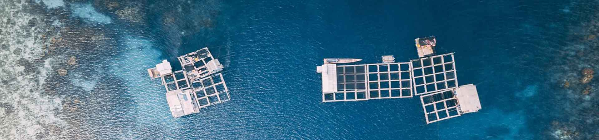 Aerial image showing cages of aquaculture in warm water