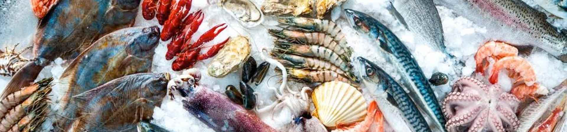 A selection of fresh seafood including fish, crustaceans and molluscs on a sales counter