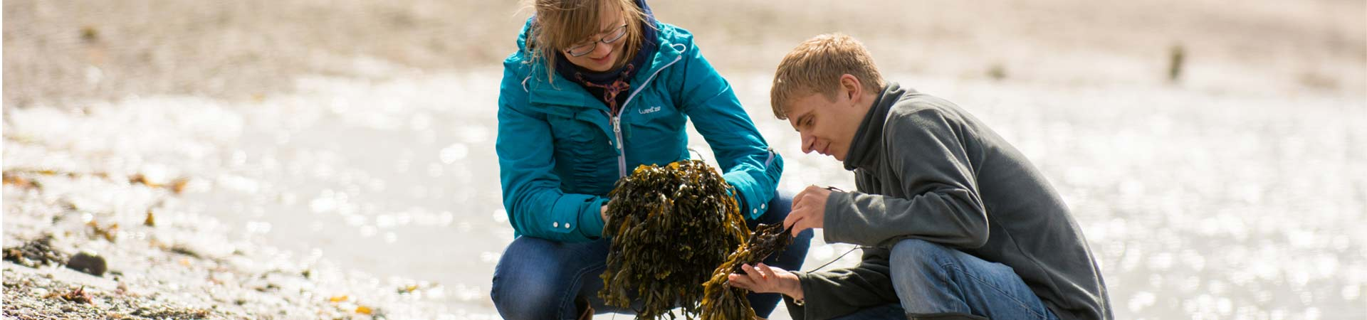 Image showing two students on the shore collecting seaweed