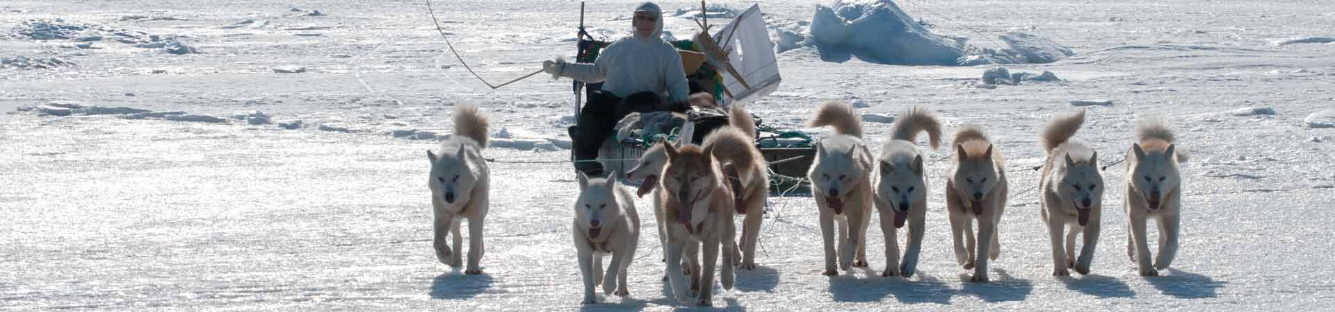 A dog sled driven by a native Greenlander with instrumentation that allows scientists to gather information while the hunter is on the ice